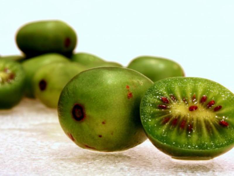 Актинидия плоды